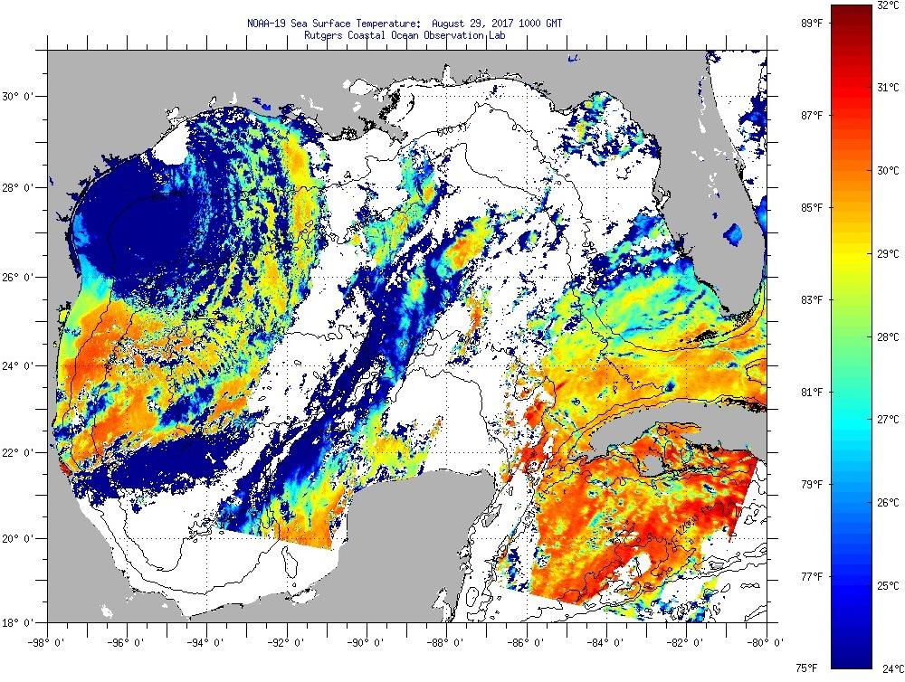 IMCS Satellite Imagery