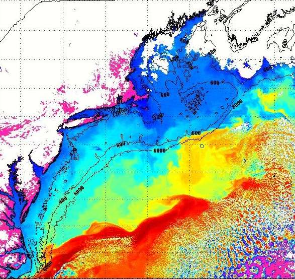 Satellite Imagery - IMCS Coastal Ocean Observation Lab on lake ontario water temperature map, cape cod ocean temps, north carolina water temperature map, cape cod water color map, united states water temperature map, atlantic ocean water temperature map, mediterranean water temperature map, hawaii water temperature map, cape cod massachusetts,
