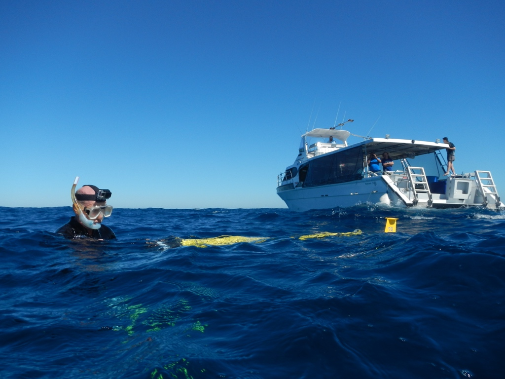 Glider RU29 is deployed on November 4, 2016 offshore Perth, Australia from a recreational diving vessel with Rutgers divers in the water and University of Western Australia scientists on board the ship.
