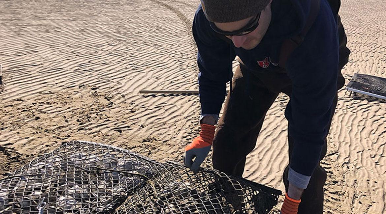 Enhancing Coastal Bivalve Aquaculture