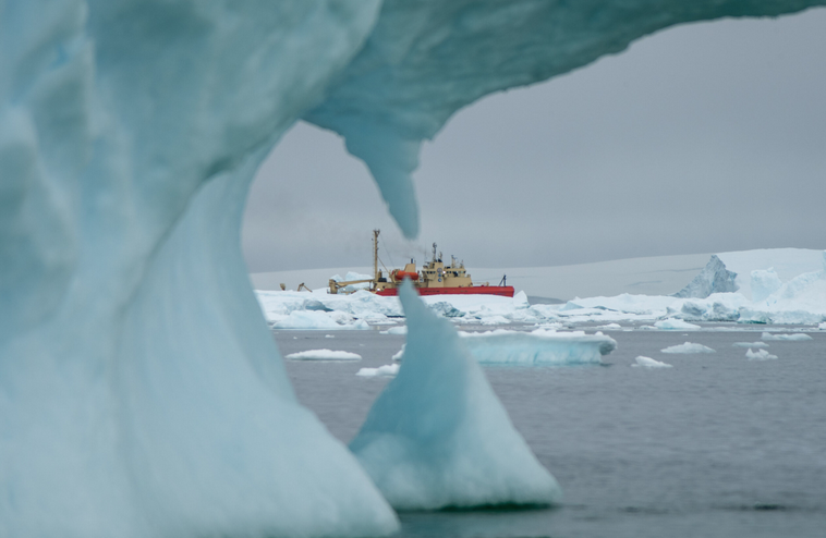 SEBS Virtual Science Cafe Series: Hot Days in a Melting West Antarctic Peninsula