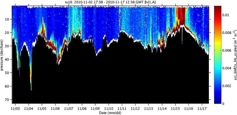 sci-bbfl2s-bb-scaled image