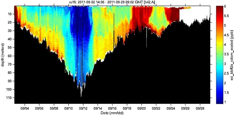 sci-bbfl2s-cdom-scaled image